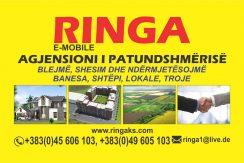 Ringa (Shitet  Banesa te Global Invest)699/21